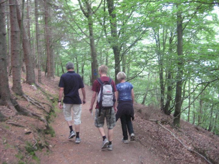 forestwalking